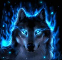 WSOMN: Wolfy in chat 2/28/16 re:Admirals Group Notification Avatar?id=1596588&m=75&t=1456609210